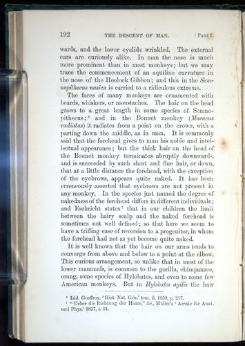 Image of Darwin-F937.1-1871-192