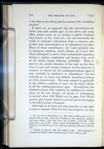 Image of Darwin-F937.1-1871-194
