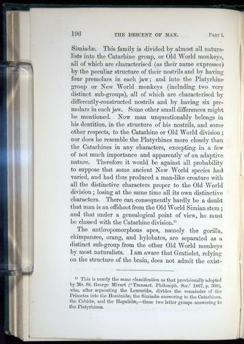 Image of Darwin-F937.1-1871-196