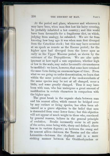 Image of Darwin-F937.1-1871-200