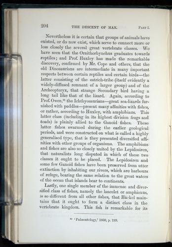Image of Darwin-F937.1-1871-204