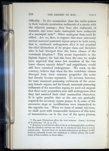 Image of Darwin-F937.1-1871-208