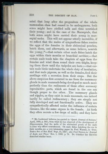 Image of Darwin-F937.1-1871-210