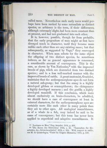 Image of Darwin-F937.1-1871-230