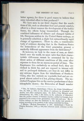 Image of Darwin-F937.1-1871-246