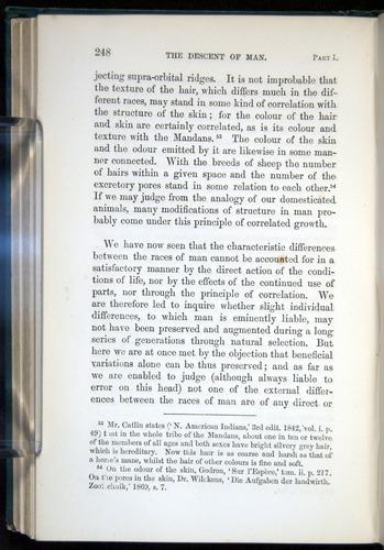 Image of Darwin-F937.1-1871-248