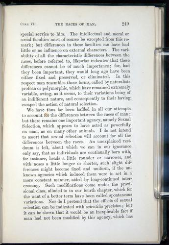 Image of Darwin-F937.1-1871-249