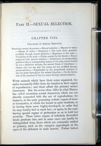 Image of Darwin-F937.1-1871-253
