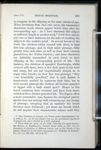 Image of Darwin-F937.1-1871-281