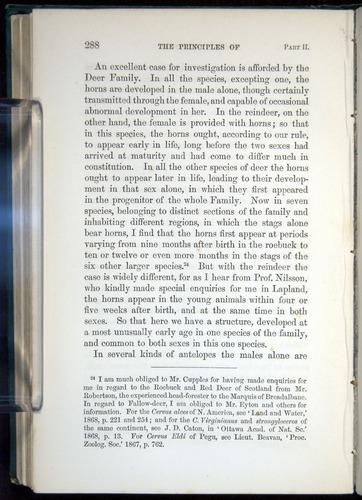 Image of Darwin-F937.1-1871-288