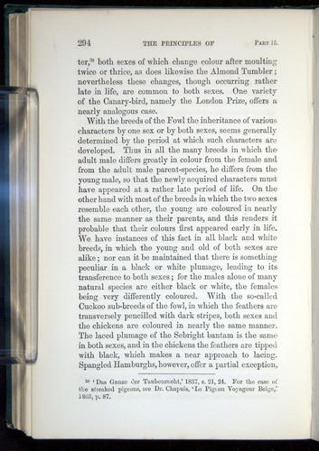 Image of Darwin-F937.1-1871-294