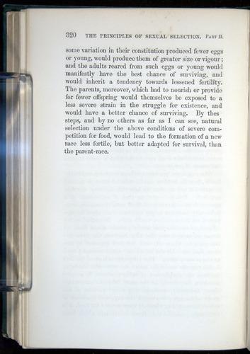 Image of Darwin-F937.1-1871-320