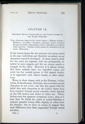 Image of Darwin-F937.1-1871-321