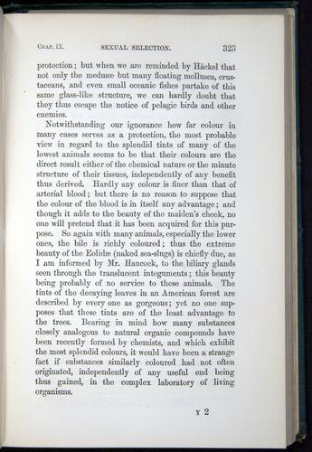 Image of Darwin-F937.1-1871-323