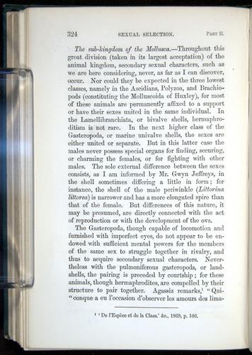 Image of Darwin-F937.1-1871-324