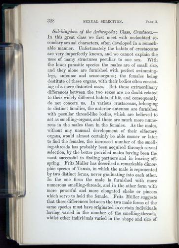 Image of Darwin-F937.1-1871-328