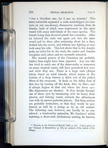 Image of Darwin-F937.1-1871-334