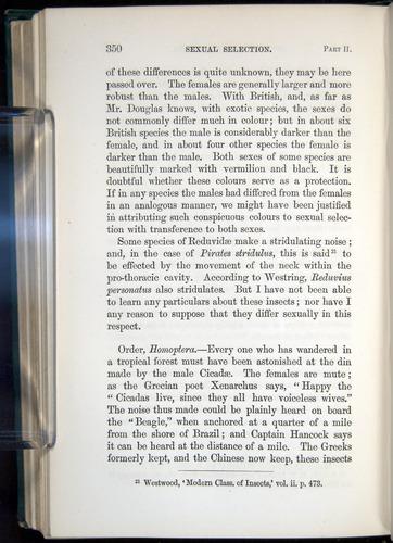 Image of Darwin-F937.1-1871-350