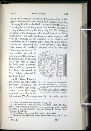Image of Darwin-F937.1-1871-353