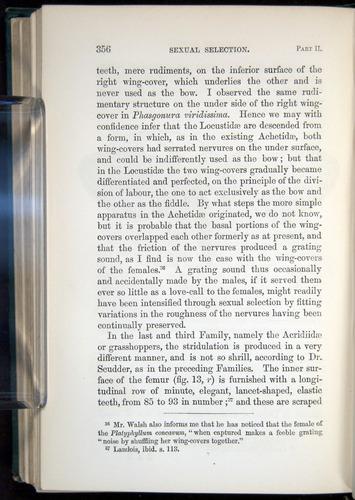 Image of Darwin-F937.1-1871-356