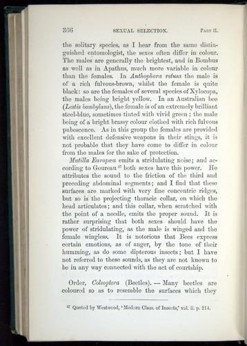 Image of Darwin-F937.1-1871-366