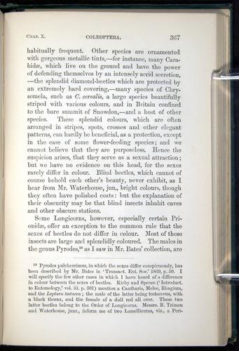 Image of Darwin-F937.1-1871-367