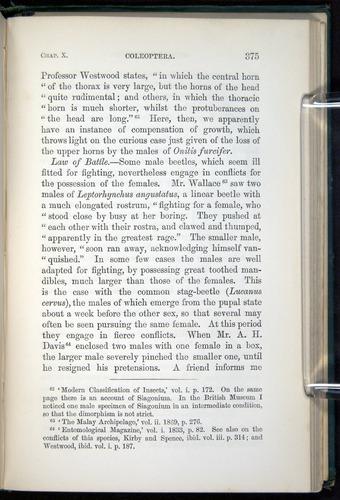 Image of Darwin-F937.1-1871-375