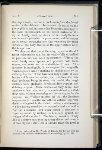 Image of Darwin-F937.1-1871-381