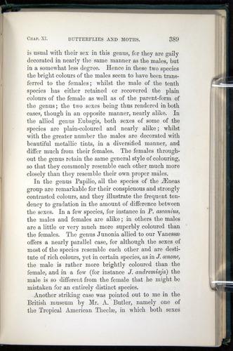 Image of Darwin-F937.1-1871-389