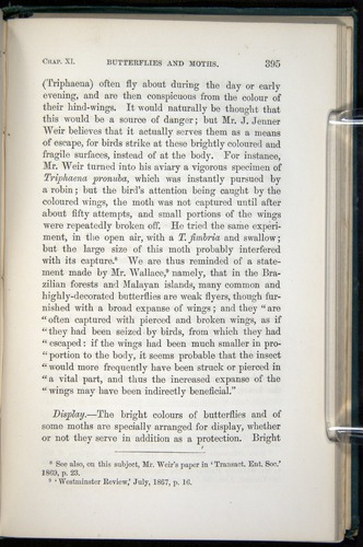 Image of Darwin-F937.1-1871-395