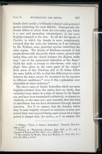 Image of Darwin-F937.1-1871-413