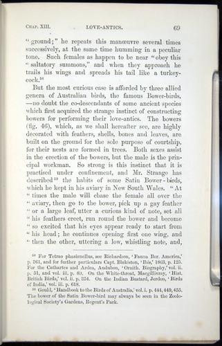 Image of Darwin-F937.2-1871-069