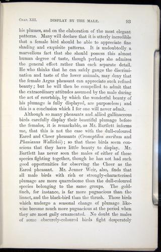 Image of Darwin-F937.2-1871-093