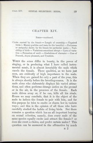 Image of Darwin-F937.2-1871-099