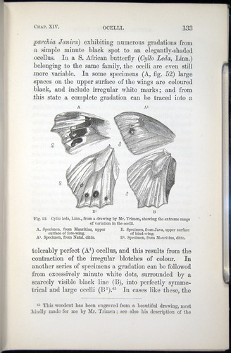 Image of Darwin-F937.2-1871-133