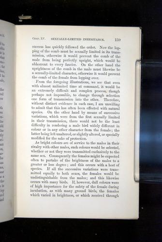 Image of Darwin-F937.2-1871-159