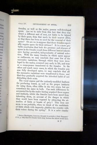 Image of Darwin-F937.2-1871-163