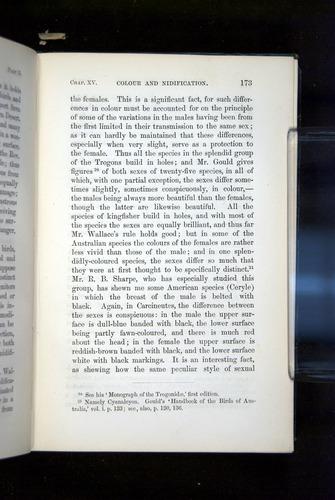 Image of Darwin-F937.2-1871-173