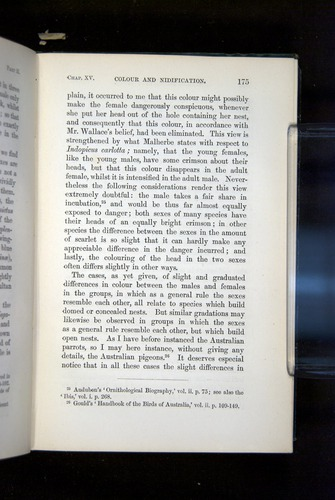 Image of Darwin-F937.2-1871-175