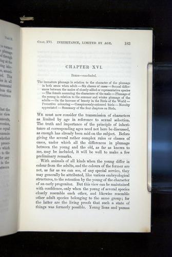 Image of Darwin-F937.2-1871-183