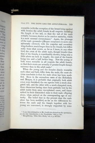 Image of Darwin-F937.2-1871-189