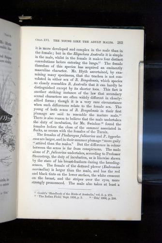 Image of Darwin-F937.2-1871-203