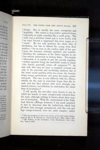 Image of Darwin-F937.2-1871-205