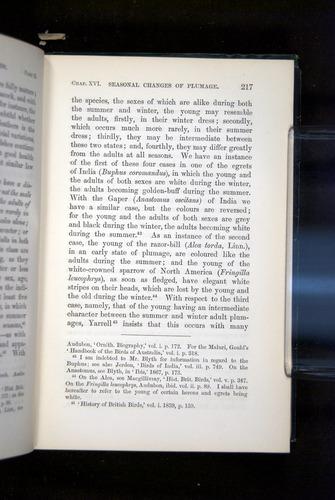 Image of Darwin-F937.2-1871-217