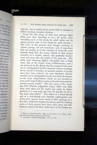Image of Darwin-F937.2-1871-219