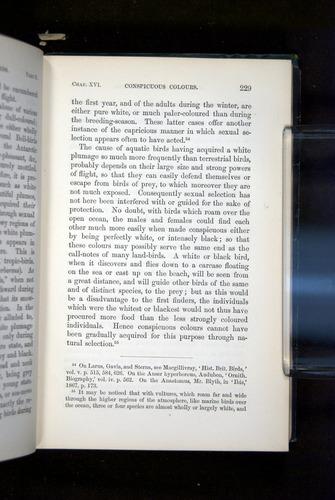 Image of Darwin-F937.2-1871-229
