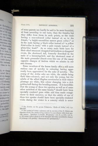 Image of Darwin-F937.2-1871-231