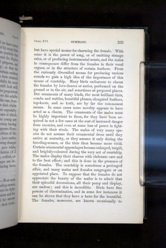 Image of Darwin-F937.2-1871-233