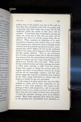 Image of Darwin-F937.2-1871-237