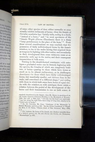 Image of Darwin-F937.2-1871-245